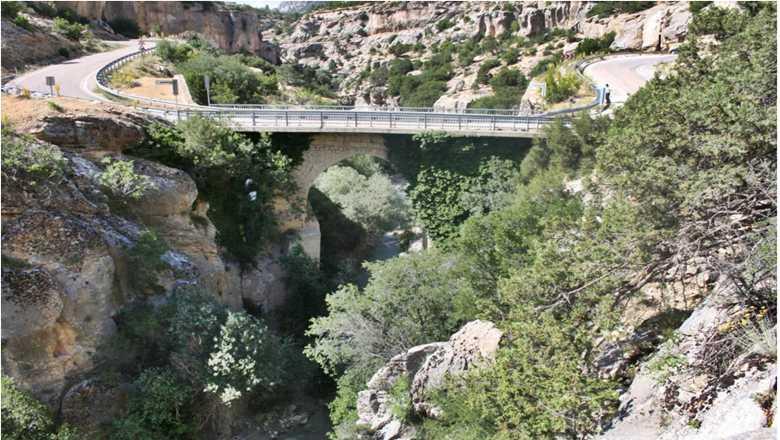 Çömelek Arı Köprüsü